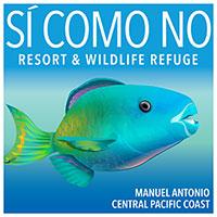 central manuel www central manuel